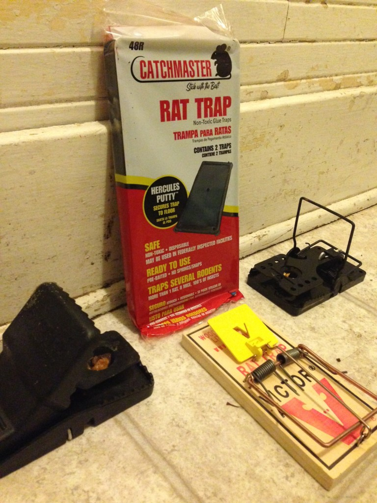 rat traps secrets of eugene pros bug zapper pest control. Black Bedroom Furniture Sets. Home Design Ideas